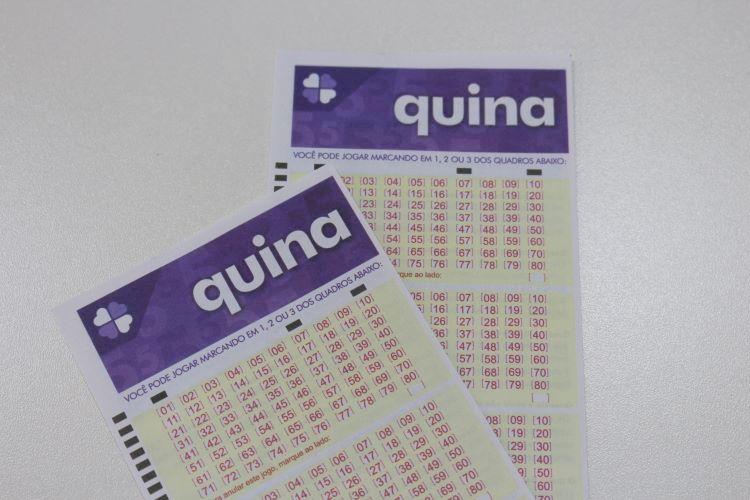 quina loteriabrasil